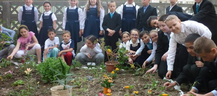 """Cea mai frumoasă grădină școlară premiată în cadrul Proiectului """"Sistem de Management Integrat al Deşeurilor în judeţul Brăila"""""""